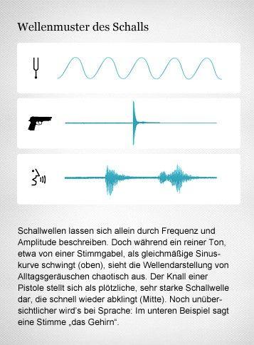 Hören: Schall im Ohr, Informationsverarbeitung im Gehirn