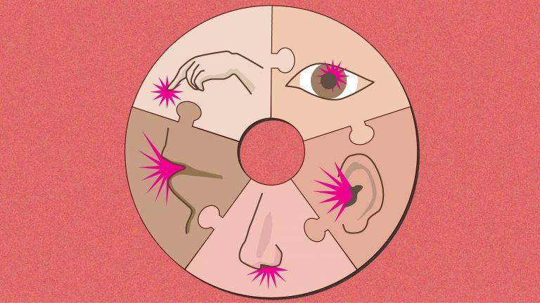 Verknüpfung der Sinne: Riechen, Hören, Sehen, Wahrnehmung, Schmecken