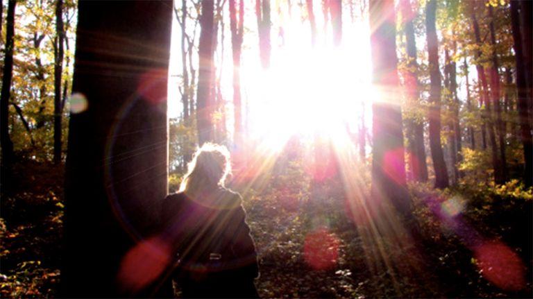 Licht sehen