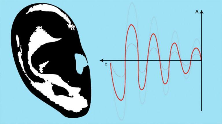 Vom Schall zur Deutung