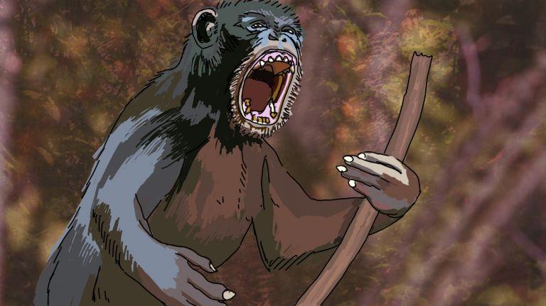 Affengewalt