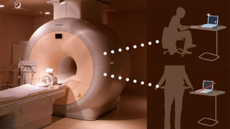 Kosten-Fahndung im Gehirn