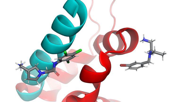 Interaktion der Interface Inhibitoren Compound 8 und Compound 19 innerhalb ihrer Bindungstaschen der Proteinkontaktfläche.